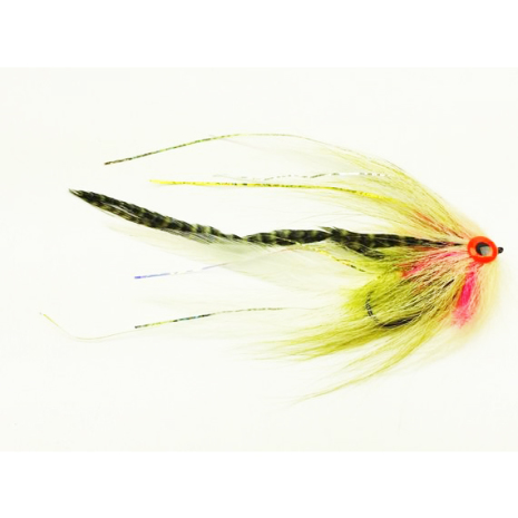 Bauer's Pike Deciever Dirty Roach