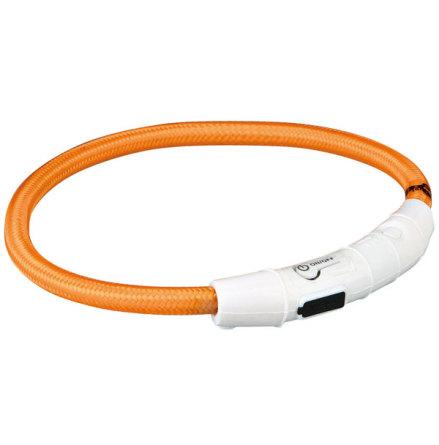 Hundhalsband Flash light ring Orange