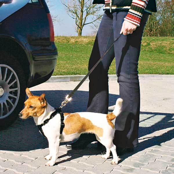 Unika Bilsele för hunden HX-55