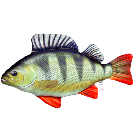 Mjukisfisk Perch 50cm
