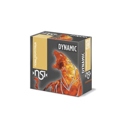 NSI Dynamic Panther Bird 12/28/US6