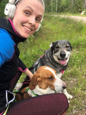Hundjaktsäsong slut men träna din hund för kommande premiärer